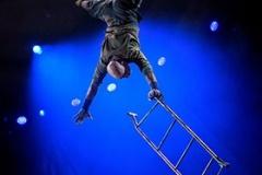 Circus-1903.-Photo-Dan-Tsantilis-9