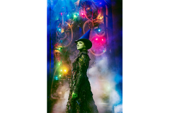 wicked-2019q3-11