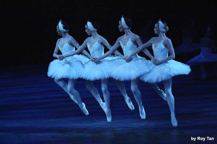 Swan Lake at the Royal Albert Hall