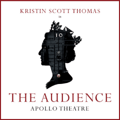 The Audience at the Apollo theatre