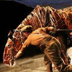War Horse | New London Theatre