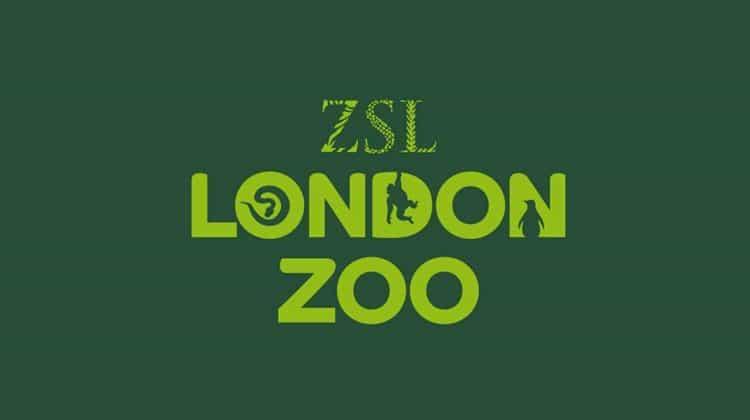 venue_london-zoo