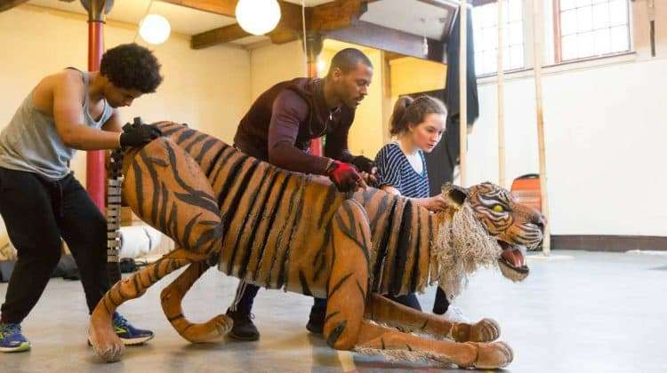Fred Davis, Ira Mandela Siohan and Romina Hytten with the tiger. Photo Johan Persson