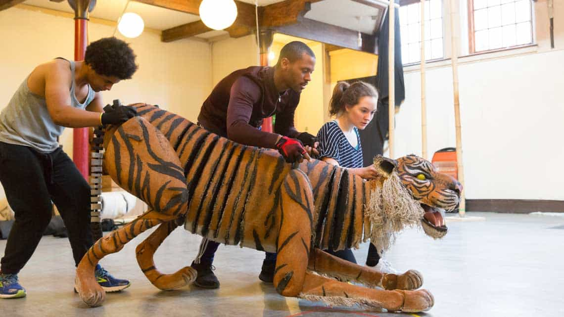 Fred Davis, Ira Mandela Siohan and Romina Hytten with the tiger. Photo Johan Persson | First Look: Running Wild in rehearsal