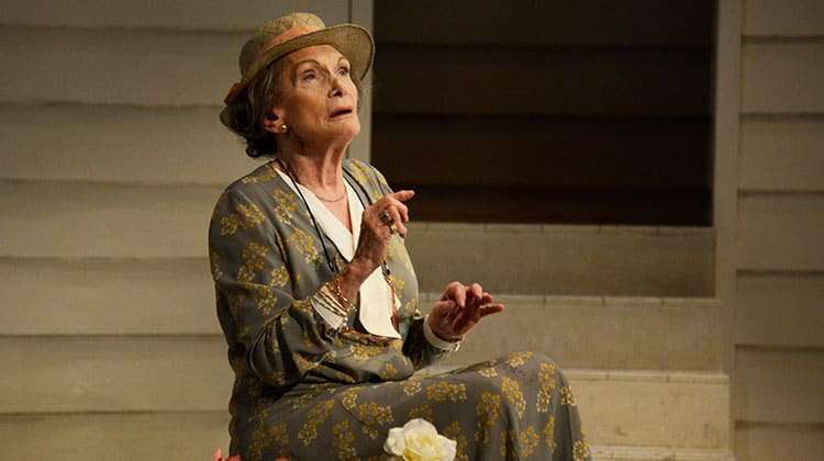 Sian Phillips in Driving Miss Daisy. Photo: Nobby Clark