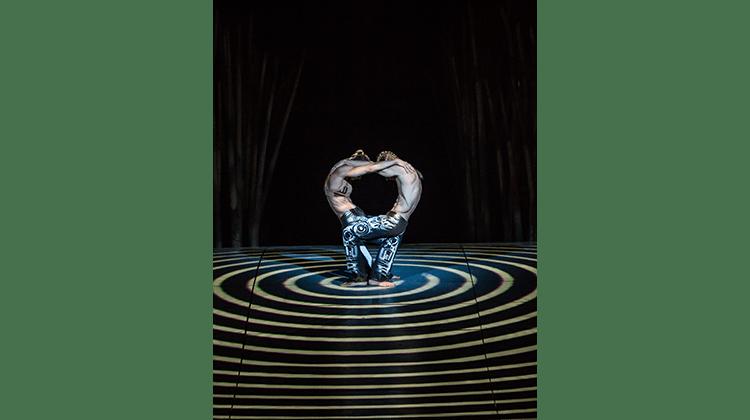 image of cirque du soleil totem