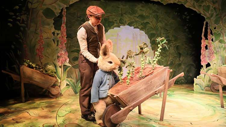 | Where Is Peter Rabbit?